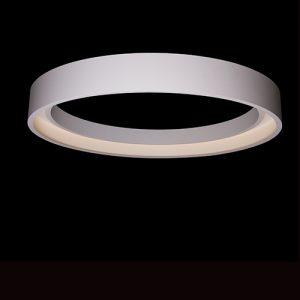 00_hoop-950-ceiling